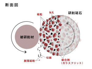 ビトリファイド系研削砥石の断面図